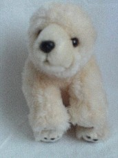 Adorable My 1st Baby Polo Bear Plush Toy